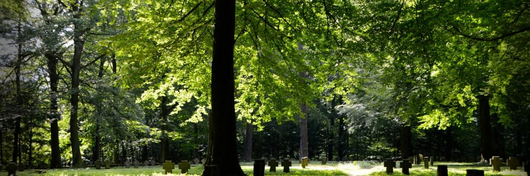 Understanding NYCIP: The Protection Your Cemetery Needs